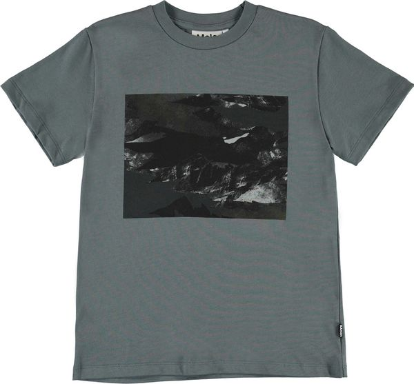 Molo Kids SS20 T-shirt SS Roxo Mountain Camo